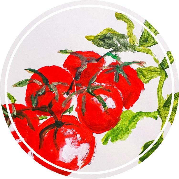 Tomaten5hhjkfhhYYD4D